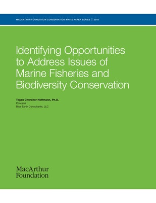 Global Marine Fisheries Strategy, 19 Large Marine Ecosystem Assessment, Case Study Presentation, and NGO/Funder Database Creation