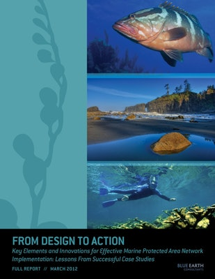 From Design to Action: Key Elements and Innovations for Effective Marine Protected Area Network Implementation: Lessons From Successful Case Studies