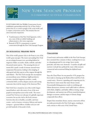 New York Seascape Program: A Commitment to Ocean Conservation Fact Sheet