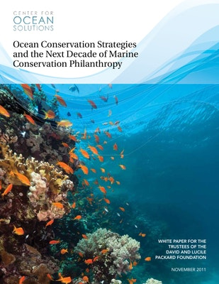 Ocean Conservation Strategies and the Next Decade of Marine Conservation Philanthropy (